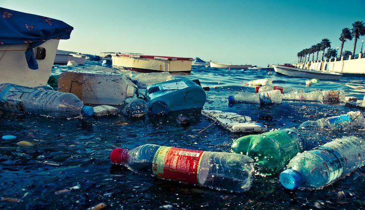 Ocean cleanup: la guida definitiva alla pulizia degli oceani.