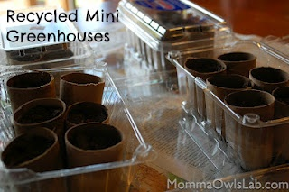Make recycled mini greenhouses with toilet paper tubes, strawberry containers and egg carton tops.