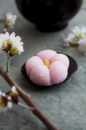 [Mochi (bocado dulce de arroz japonés) con flores de cerezo] » Mochi (Japanese rice cake) with cherry blossoms