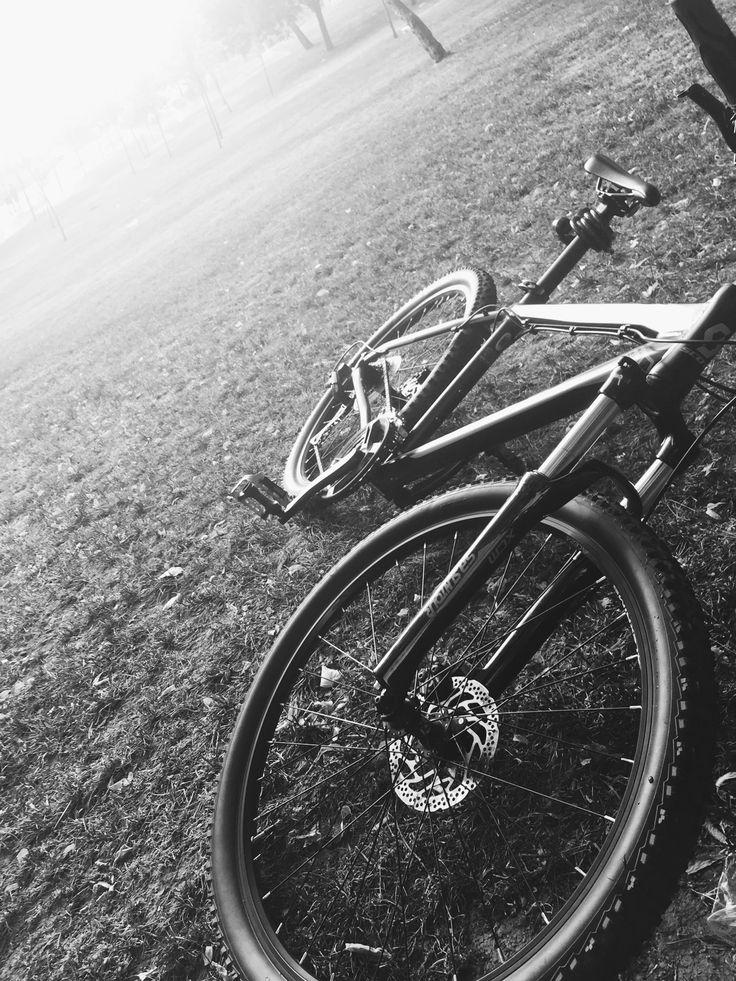 bike #schott