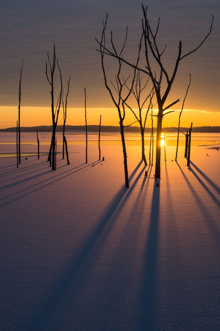 Sunrise in the Snow II by Dave Rogers on 500px