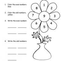 math worksheet : 1000 images about math lessons on pinterest  math worksheets  : Grade 1 Math Worksheets Free Printable
