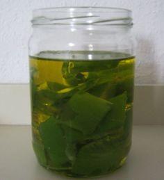 Aloe vera olie is een zeer goede huidolie met vele vitaminen en mineralen. Je maakt het zelf met dit recept!