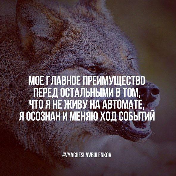 #VyacheslavBulenkov