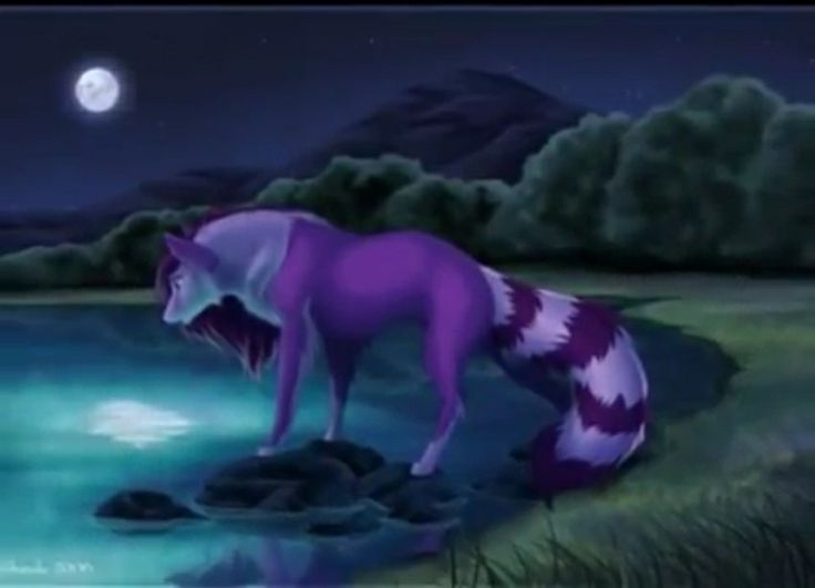 Purple anime wolf wolfs anime wolf wolf wolf pictures - Anime wolves in love ...