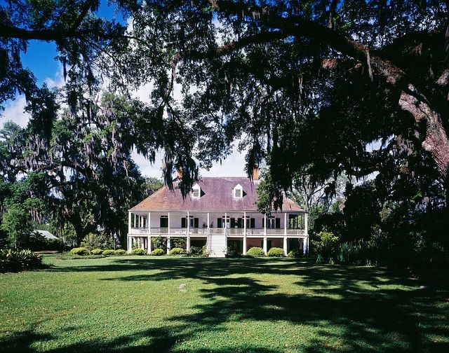 Woont u in een villa of landhuis in een bosrijk of landelijk gebied? Zorg er dan voor dat ongedierte uw woning niet binnen komt of zet ze weer buiten.