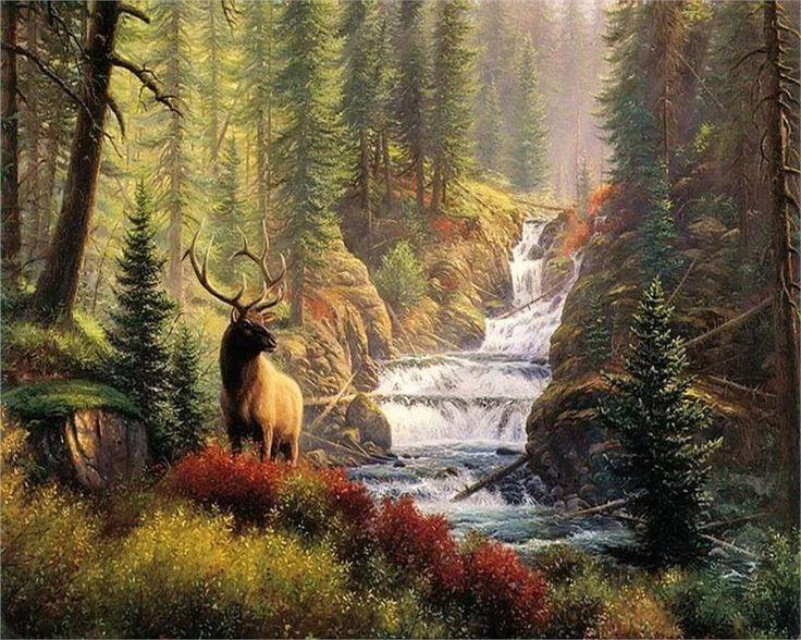 Уборщица, открытки с природа с животными