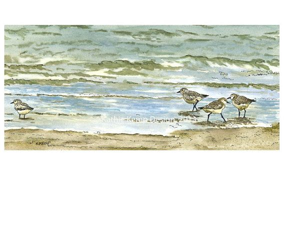 Sandpipers Birds on Beach Pen and Ink Watercolor by WildFernFarm, $50.00