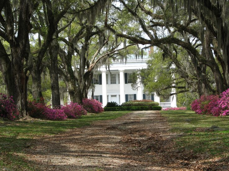 Dream home! Plantation or Victorian. I love the trees..