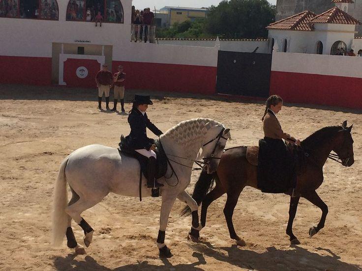 Exibição a cavalo