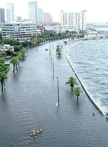 Tropical Storm Debby, Bayshore Blvd, Tampa - My first ...
