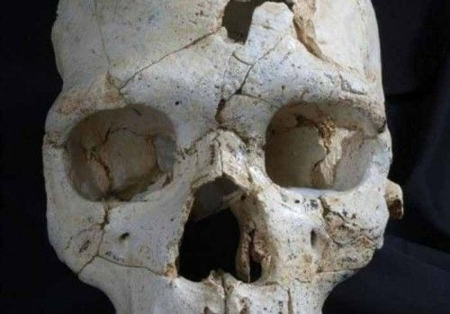 En Eski Cinayet 430 Bin Yıl Önce İşlenmiş  http://www.nouvart.net/en-eski-cinayet-430-bin-yil-once-islenmis/