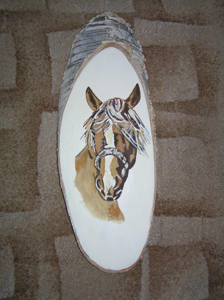 kůň F