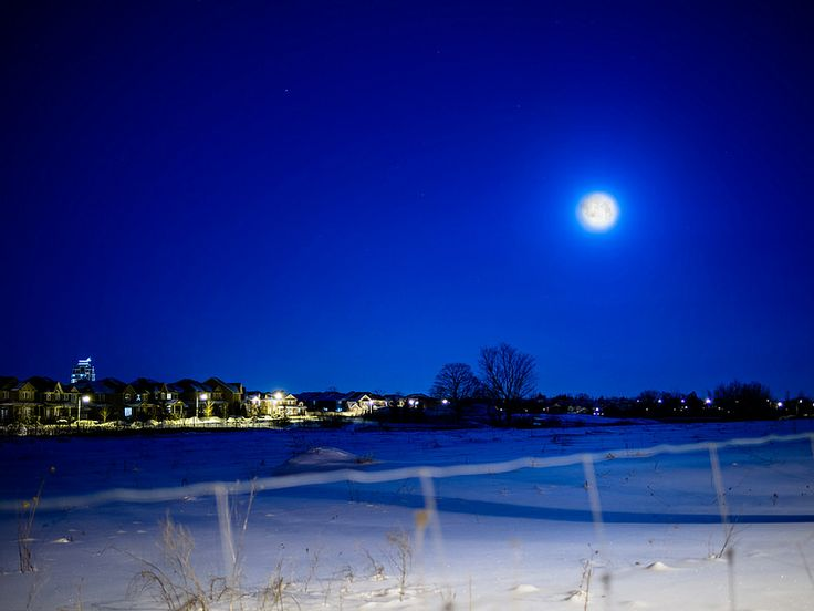 Moon lit snowy night. Was really cold though -26c.