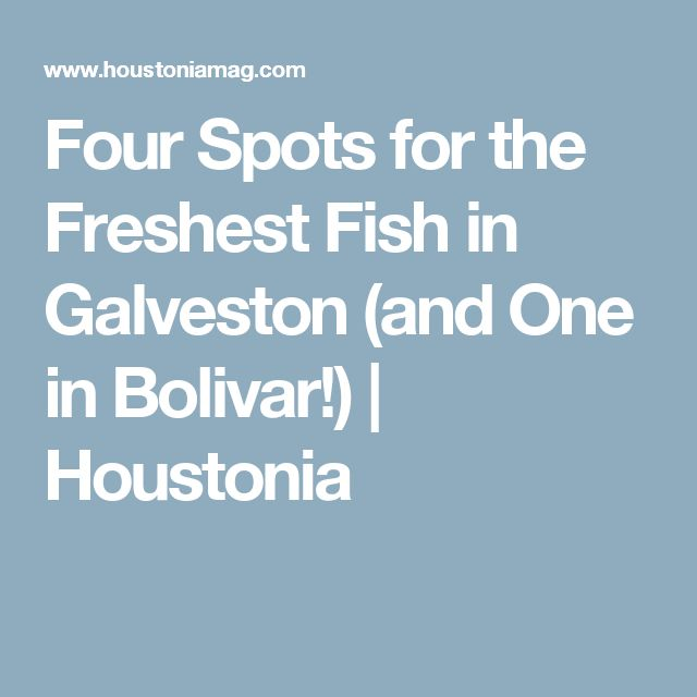 Four Spots for the Freshest Fish in Galveston (and One in Bolivar!) | Houstonia