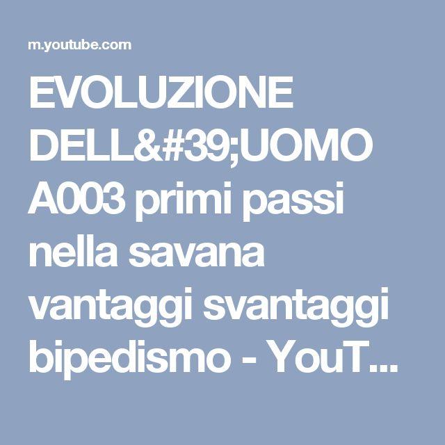 EVOLUZIONE DELL'UOMO A003 primi passi nella savana vantaggi svantaggi bipedismo - YouTube