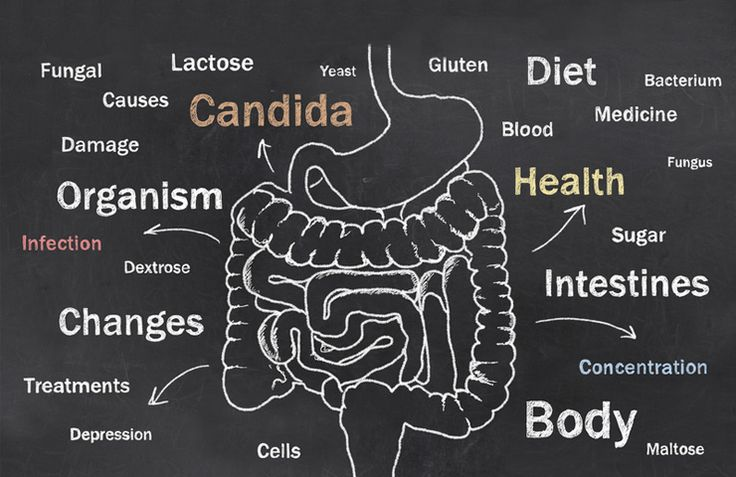 Candida can be a systemic disease! Know the signs of yeast infection, tips to prevent it and ways to treat the problem. Check if you have candida today!