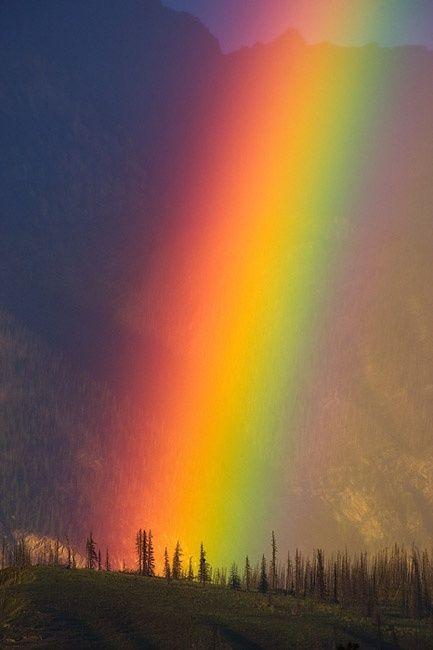 Rainbow over Alberta, Canada. c.