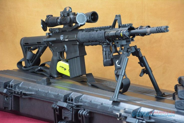 Image result for AR-10
