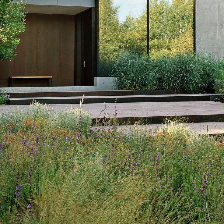 Le migliori 25 idee su Giardini Contemporanei su Pinterest  Giardini ...