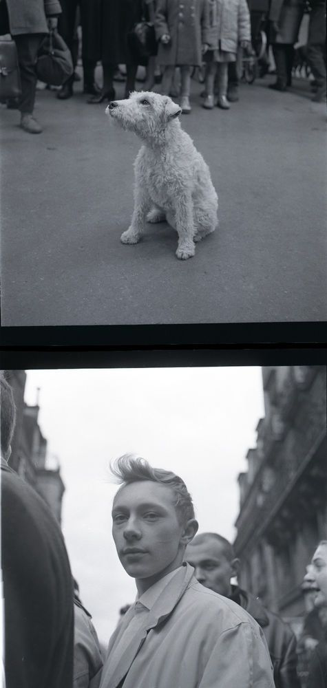 LOT DE 2 X ORIGINAL 6X6CM NEG NEGATIF DE PHOTO TINTIN ET MILOU HERGE