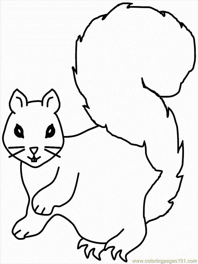 squirrel coloring pages free printable coloring page squirrel coloring 9 mammals squirrel