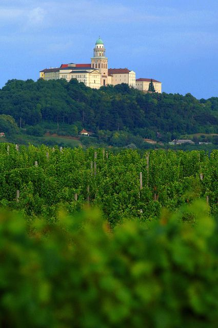 The Archabbey and vineyard of Pannonhalma Hungary