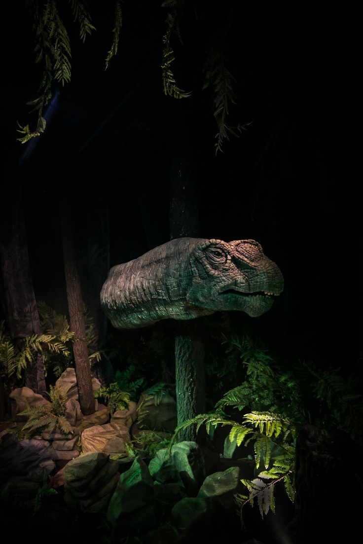 Green tea and velociraptors it s just a flesh wound - One Of The Animatronic Dinosaurs From Age Of The Dinosaur Photography By Richard Kenworthy