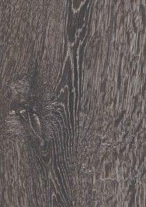 Bedrock oak 5541