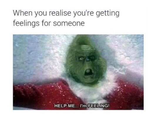 Lol the Grinch memes <--- You mean when I find my otp, see/read/imagine posts about my otp, and generally anything that has to do with my otp.