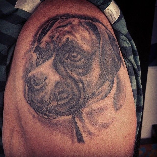 17 best images about portrait pet realistic tattoos on for Tattoo fort myers