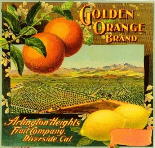 Riverside Arlington Golden Orange Crate Label Art Print