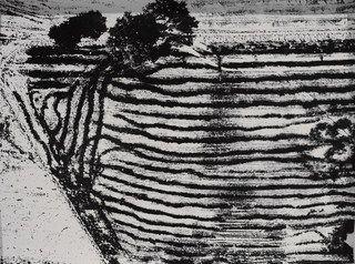 Paesaggio (Landscape) ,Mario Giacomelli