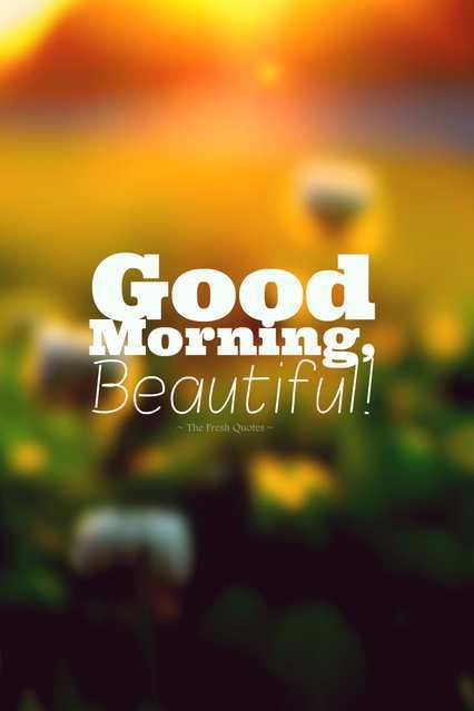 Beautiful Quotes For Facebook Status: Good Morning Beautiful Angel Have A Great Day