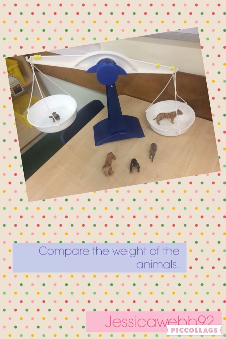 Compare the weight of the animals. EYFS