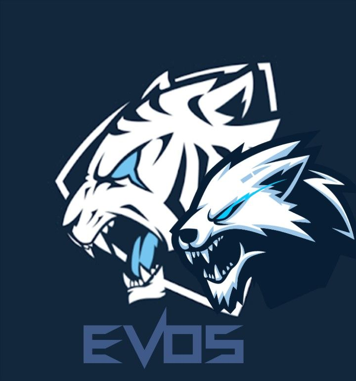 Cool evos logo wallpaper