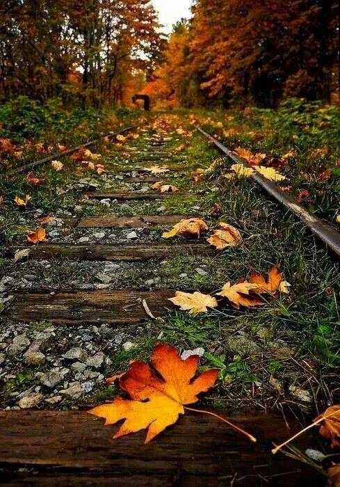 Forgotten places....