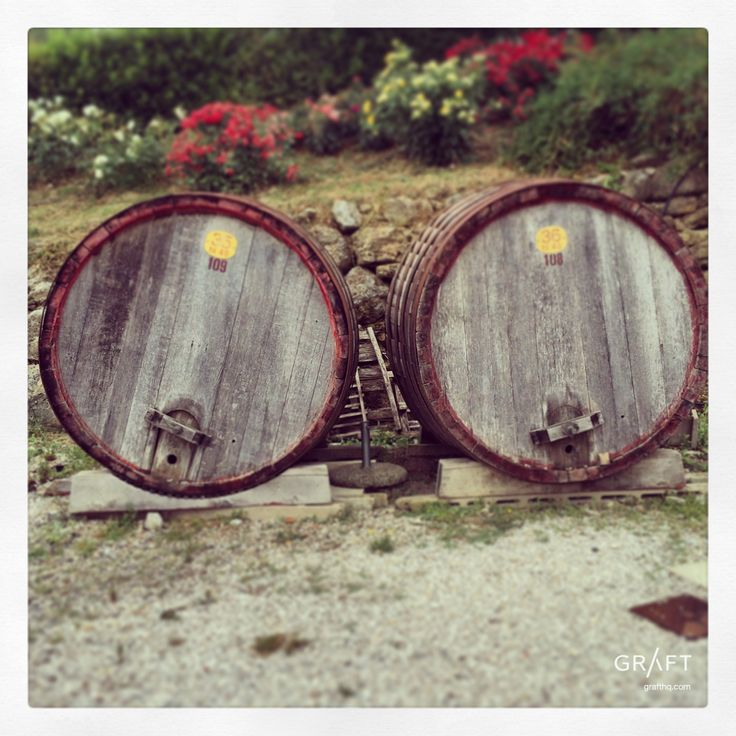 Tuscan Barrels Tuscany Italy by Grafthq.com
