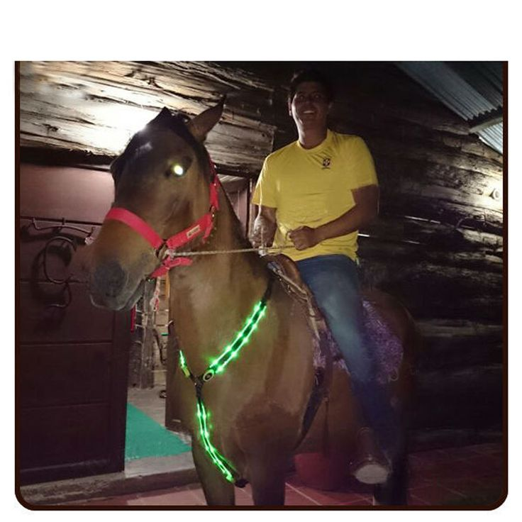 Ebuy360 Night Racing Equestrian Riding Horse Bridle Halter Double LED safety Light Horses Neck Belt equipment Horsing Accessory