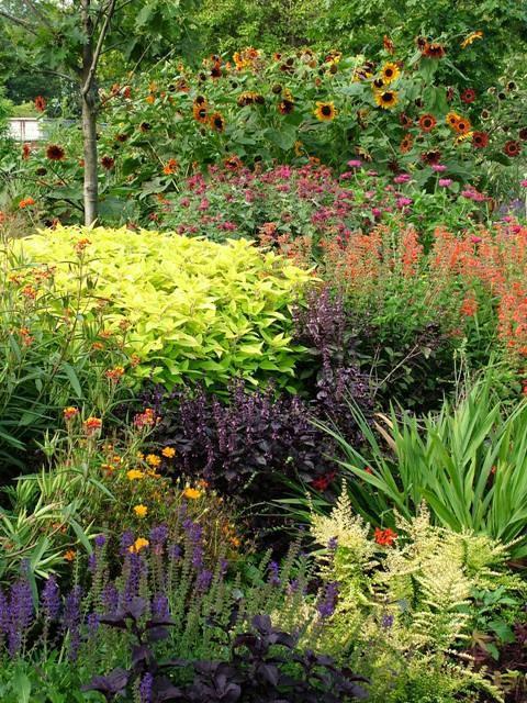 Deer Resistant Plants Gardening Trees And Vegetation