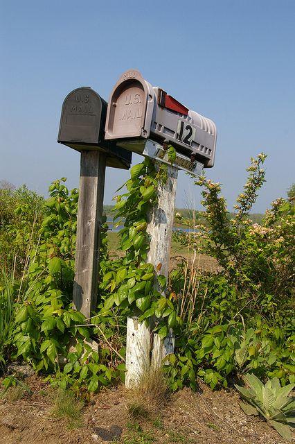 Mail Box's