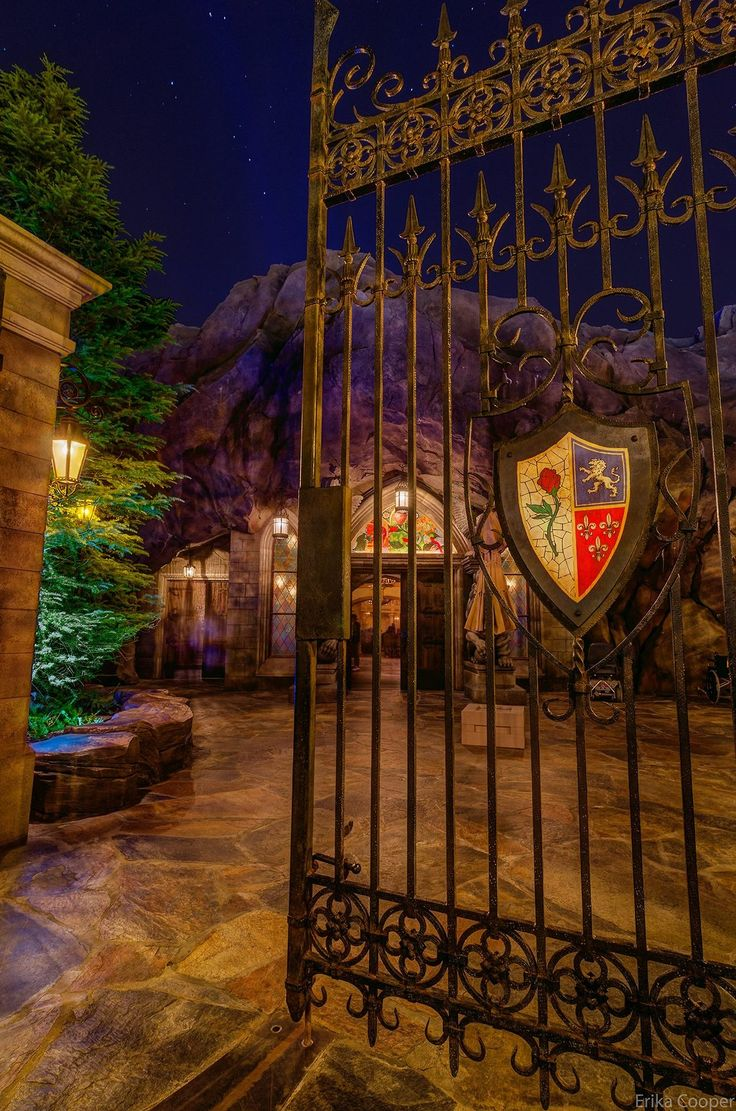 Be our Guest restaurant at Magic kingdom is inside the Beast's castle abs is amazing!!!! The food is delicious! To be sure you get a table you HAVE to make reservations and still be ready to wait!! And don't forget to order the Gray Stuff! It is indeed delicious!!!!!