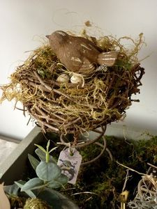 (Nest on bed spring.) Out of the mud and mire spring forth fresh beginnings.....Believe. Jesus Christ makes all things new; ANYTHING is possible!