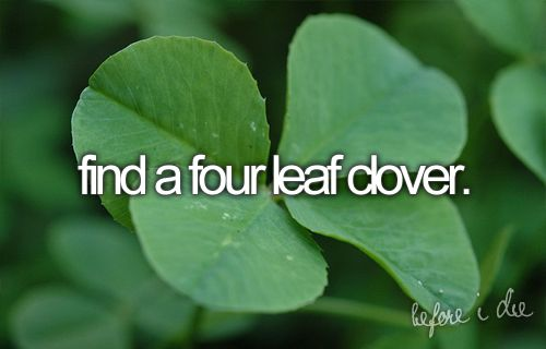 Find a Four Leaf Clover / Bucket List Ideas / Before I Die