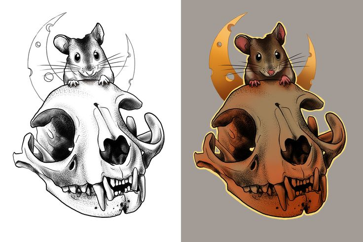 #cat #skull #mouse #drawing #art #tattoo #design