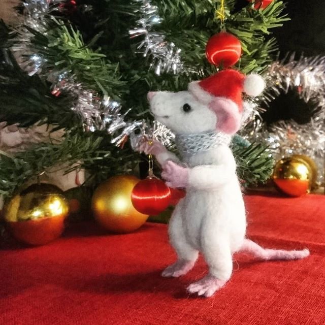 It's time to decorate    #SkojSkojDesignStudio #winterfun #woolcraft #woolart #feltedanimal #christmas #decor #christmasdecor #christmastree #homedecor #petsofinstagram #mice #rats #sweet #happy #winterdecor #winterwonderland #instalike #instamood #december