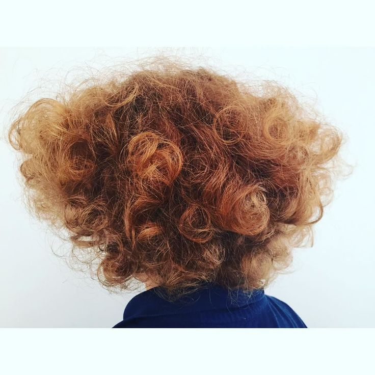This is what happens when I brush out the curls in my 5yo sons hair! #volume #hairgoals #parenting Lets connect on facebook: http://ift.tt/2gq1dB7
