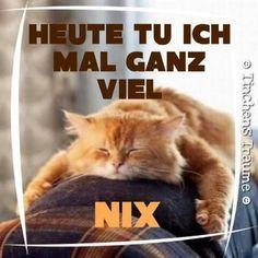 Nix nix nix
