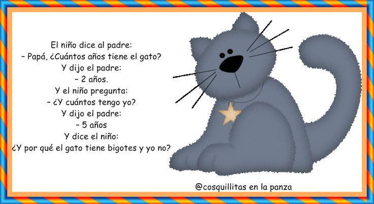 CoSqUiLLiTaS eN La PaNzA BLoGs: CHISTES PARA NIÑOS Humor Pinterest Blog and Chistes