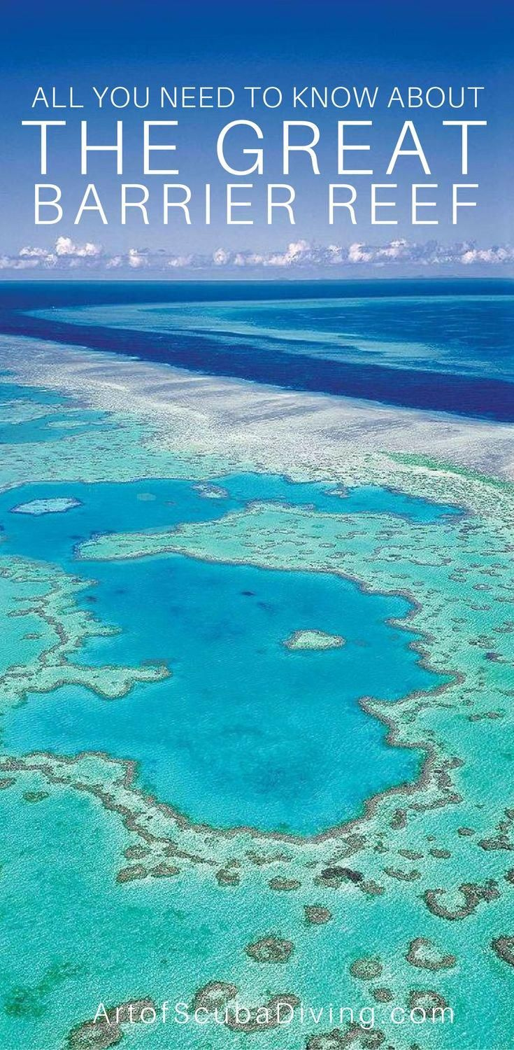 Interesting Facts about The Great Barrier Reef